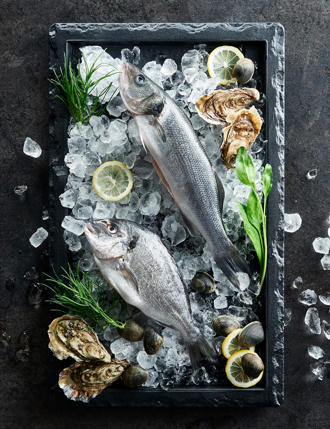 Fresh fish platter with ice