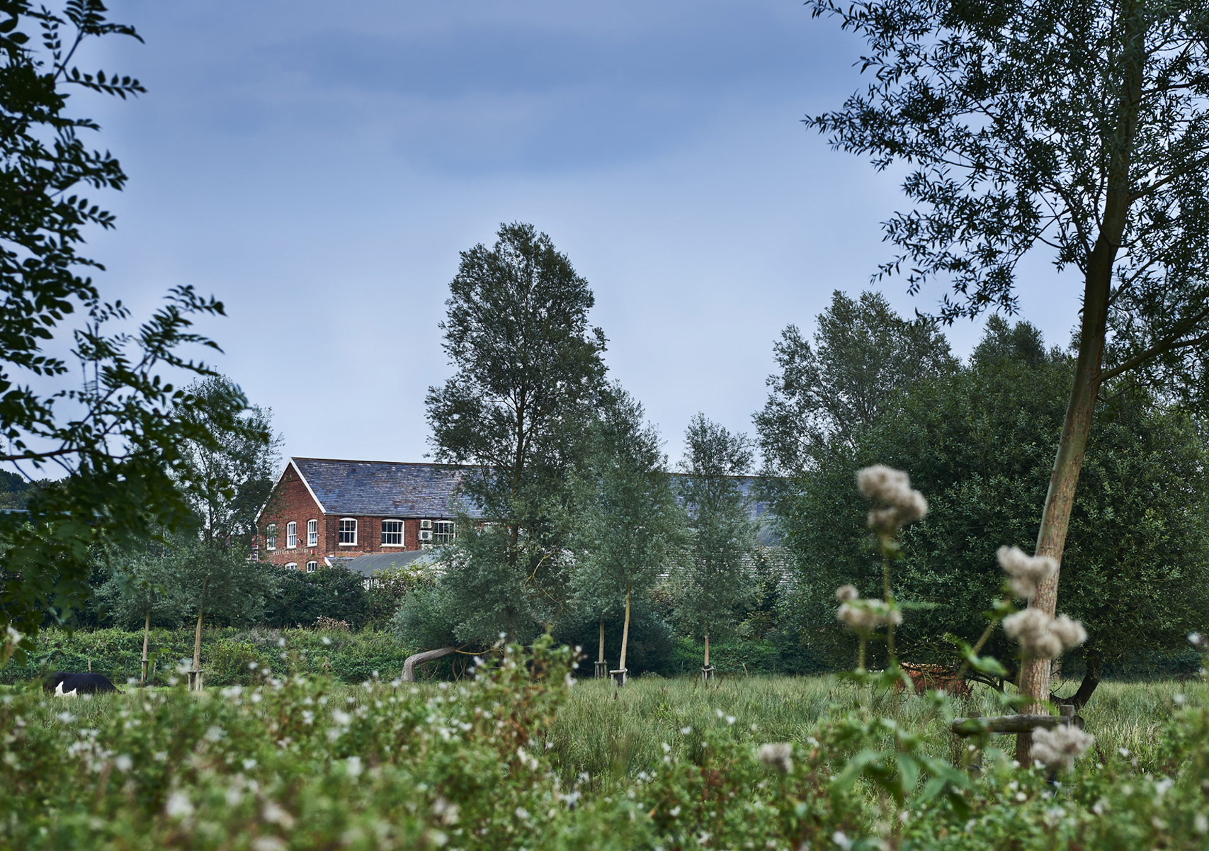 Stephen Walters Silk Mill – view across the meadow