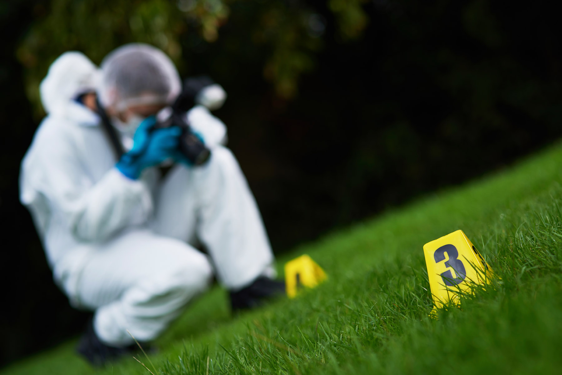 Police Forensics on site