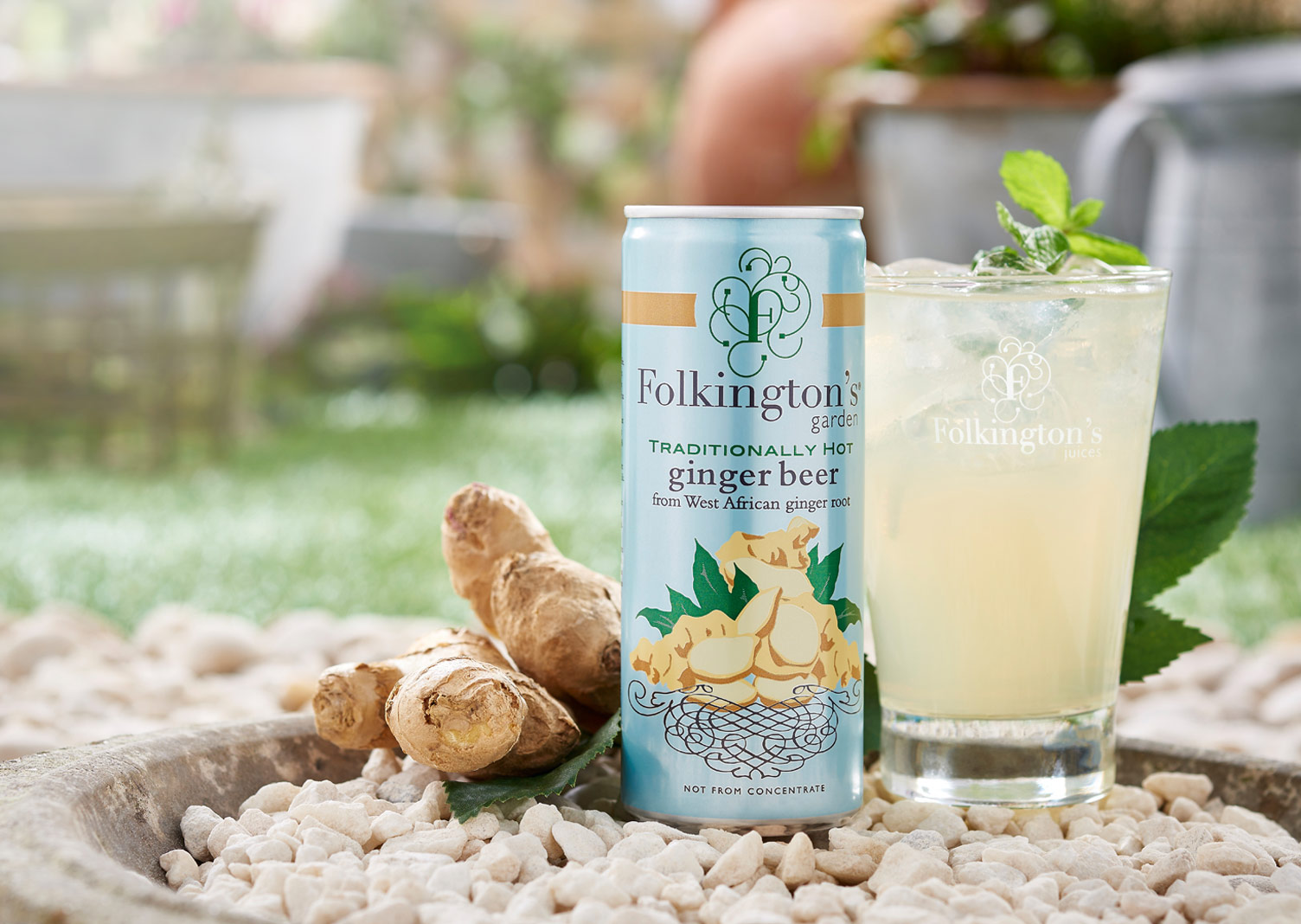 Folkingtons Garden Range Ginger Beer